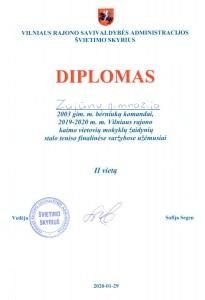 stalo-tenisas20200129b